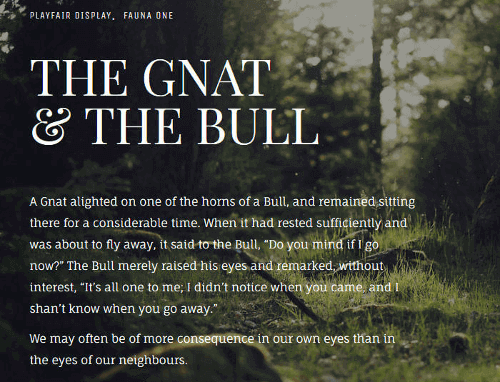 Font pairings from the Google Web Fonts Typography Project website.