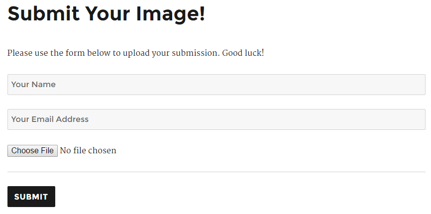 Frontend submission form (Logged In)