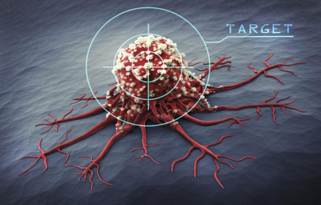 A targeted virus, molecular scale view CG render